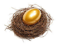 Gold Nest Egg
